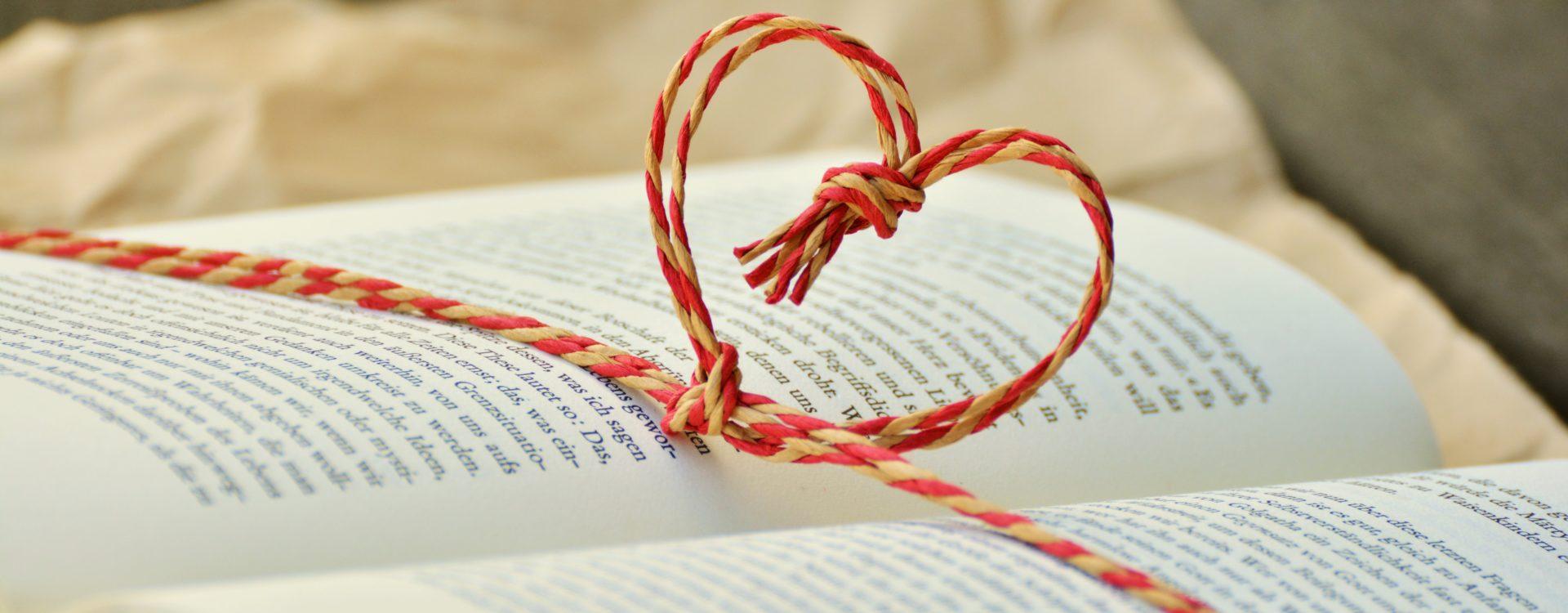 knjiga-srce